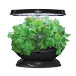 Black Indoor Herb Garden Kit Gift for Home Cooks