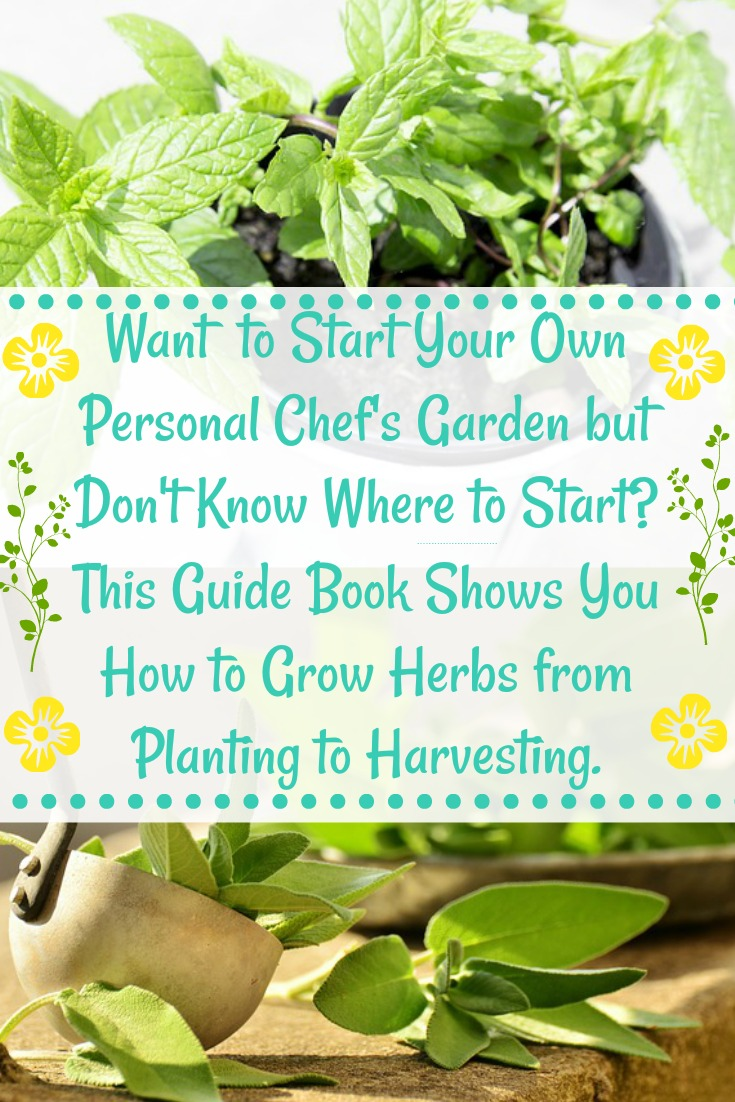 Herb Garden Book for Beginners
